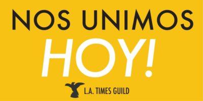 Hoy - LATGuild Logo